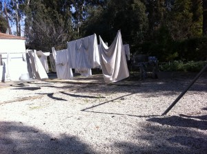 The laundry workshop hid the entrance to the Bullet Factory at Machon Ayalon