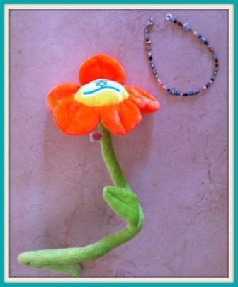 Israel flower and bracelet
